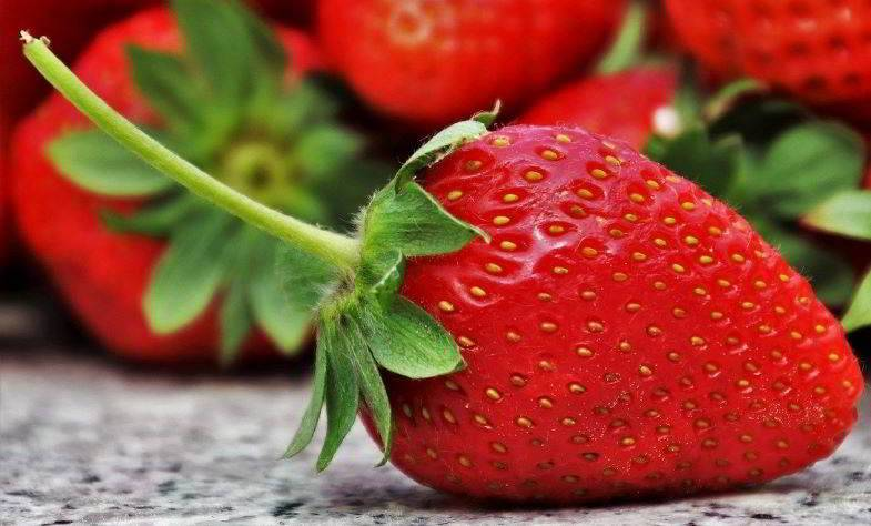 Erdbeeren zum Extrahieren von Aromen für natürliche Dampfflüssigkeiten.